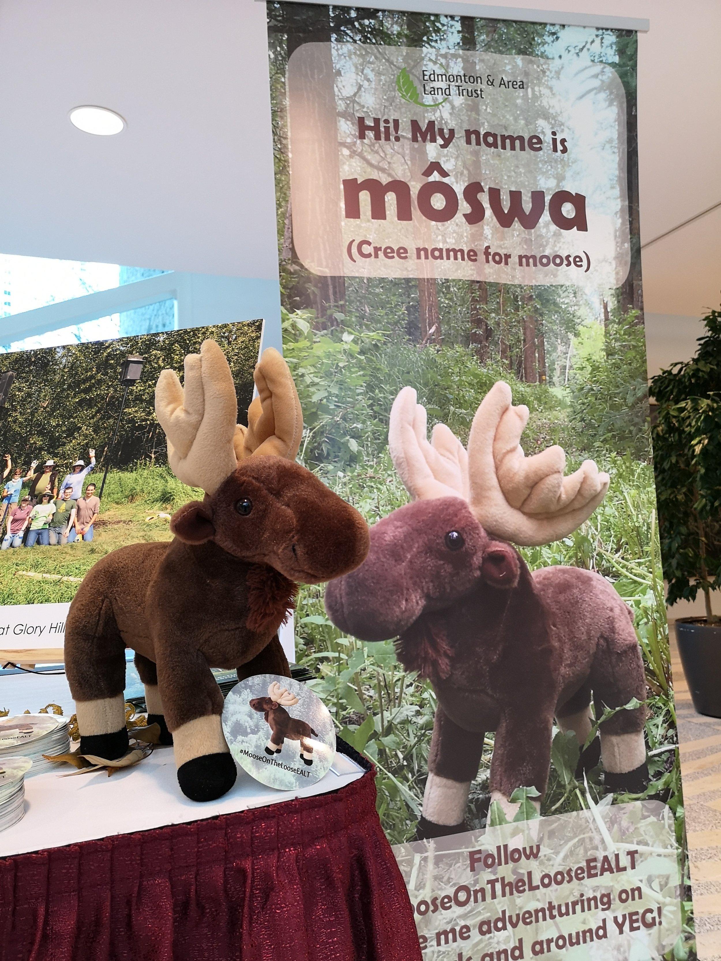 môswa at EALT's 10th Anniversary Gala