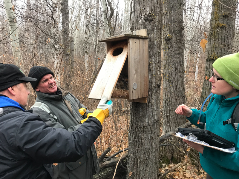 Volunteers cleaned nest boxes at Glory Hills