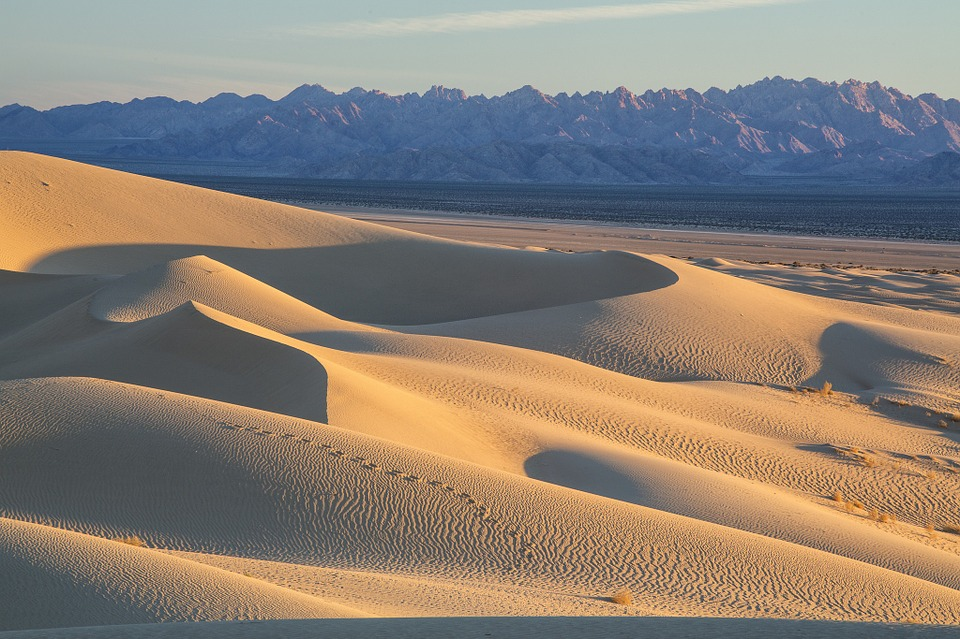 Cadiz Dunes Wilderness in California. Photo by Bob Wick, BLM, CC BY 2.0