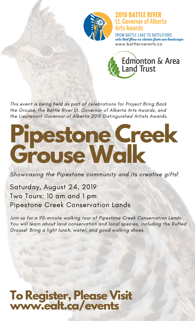 Pipestone Creek Grouse Walk.png
