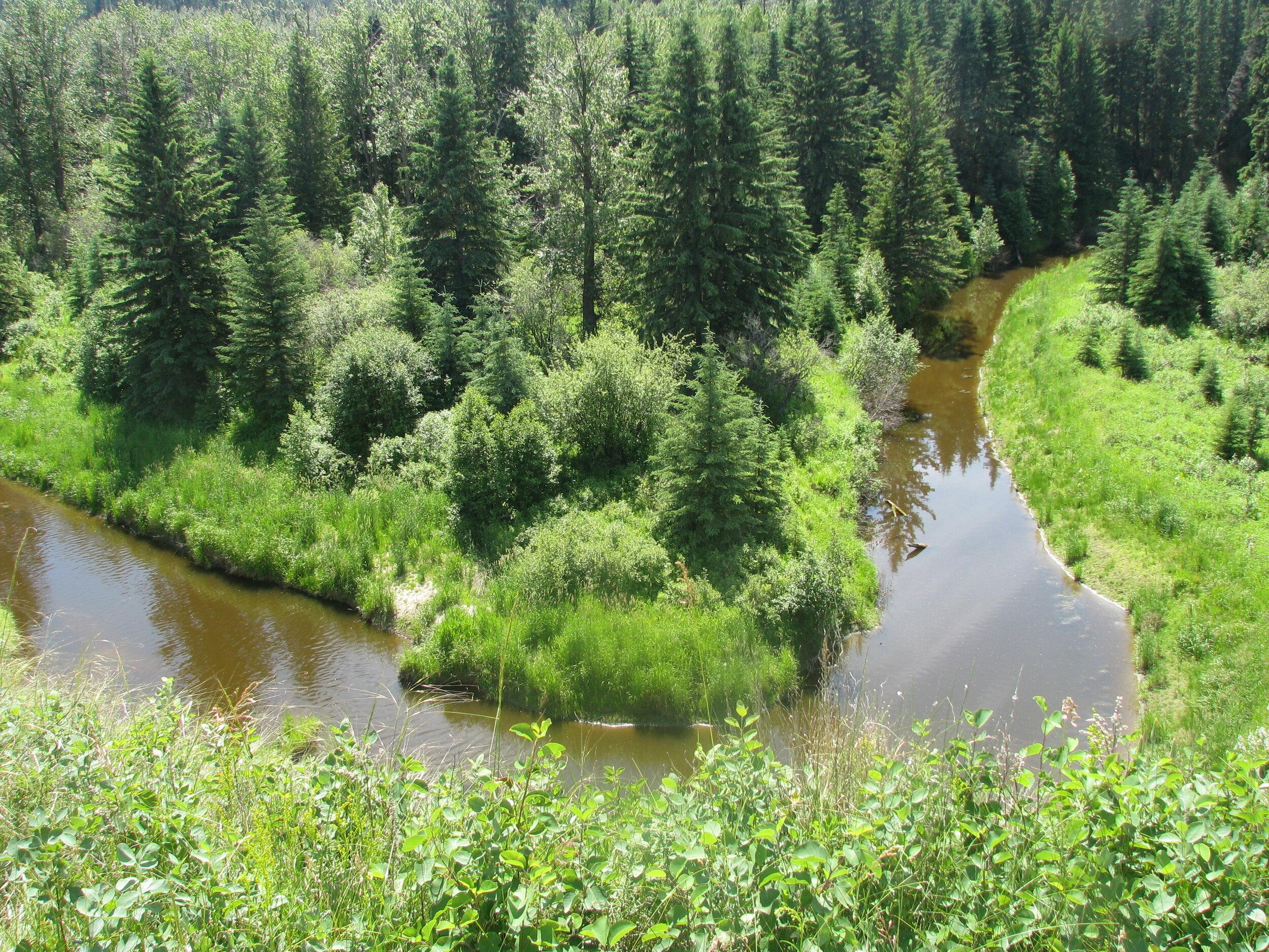 Pipestone Creek.JPG