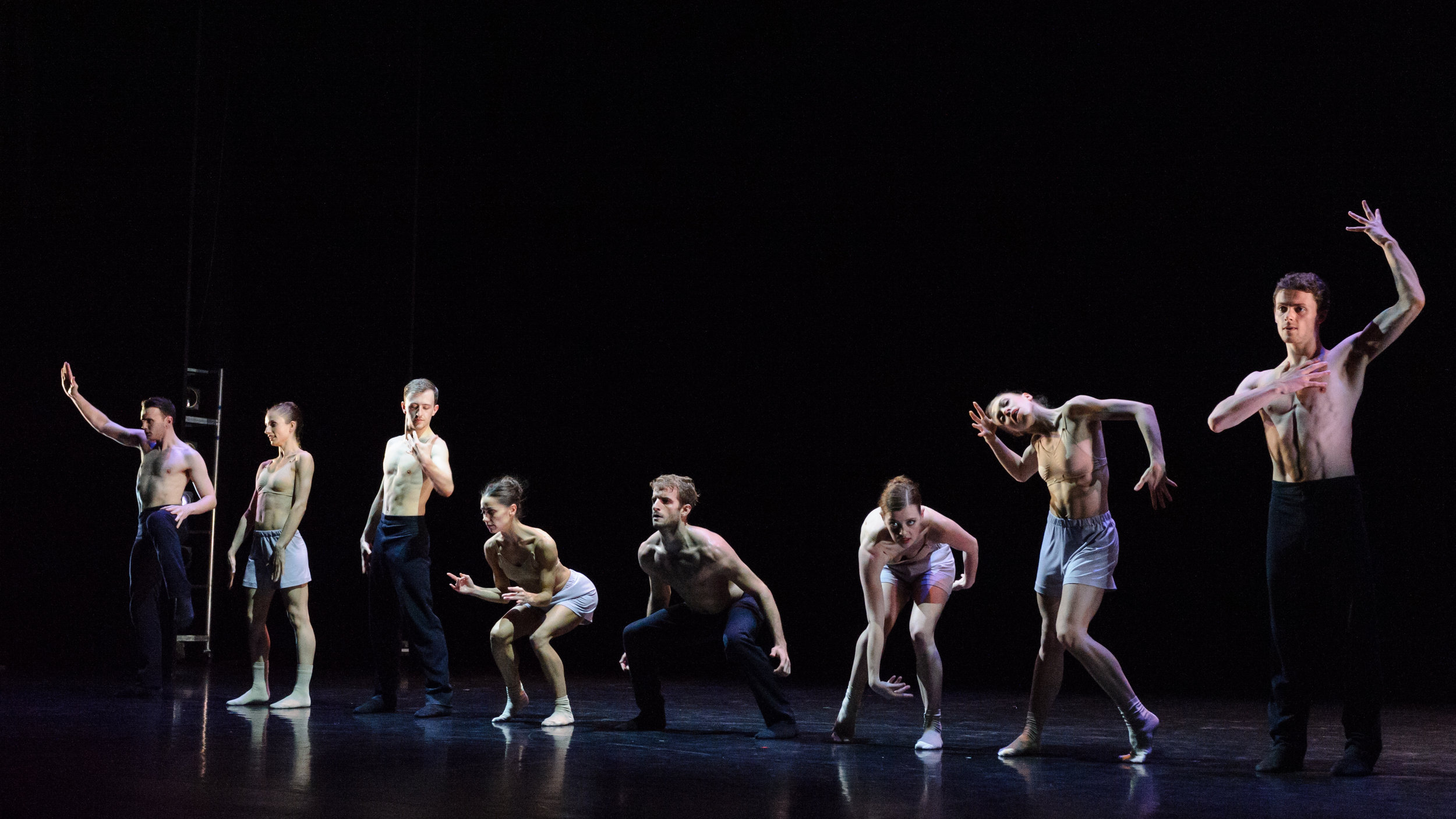 The Scottish Ballet in  Sibilo  by Sophie Laplane. Photo by Jane Hobson.