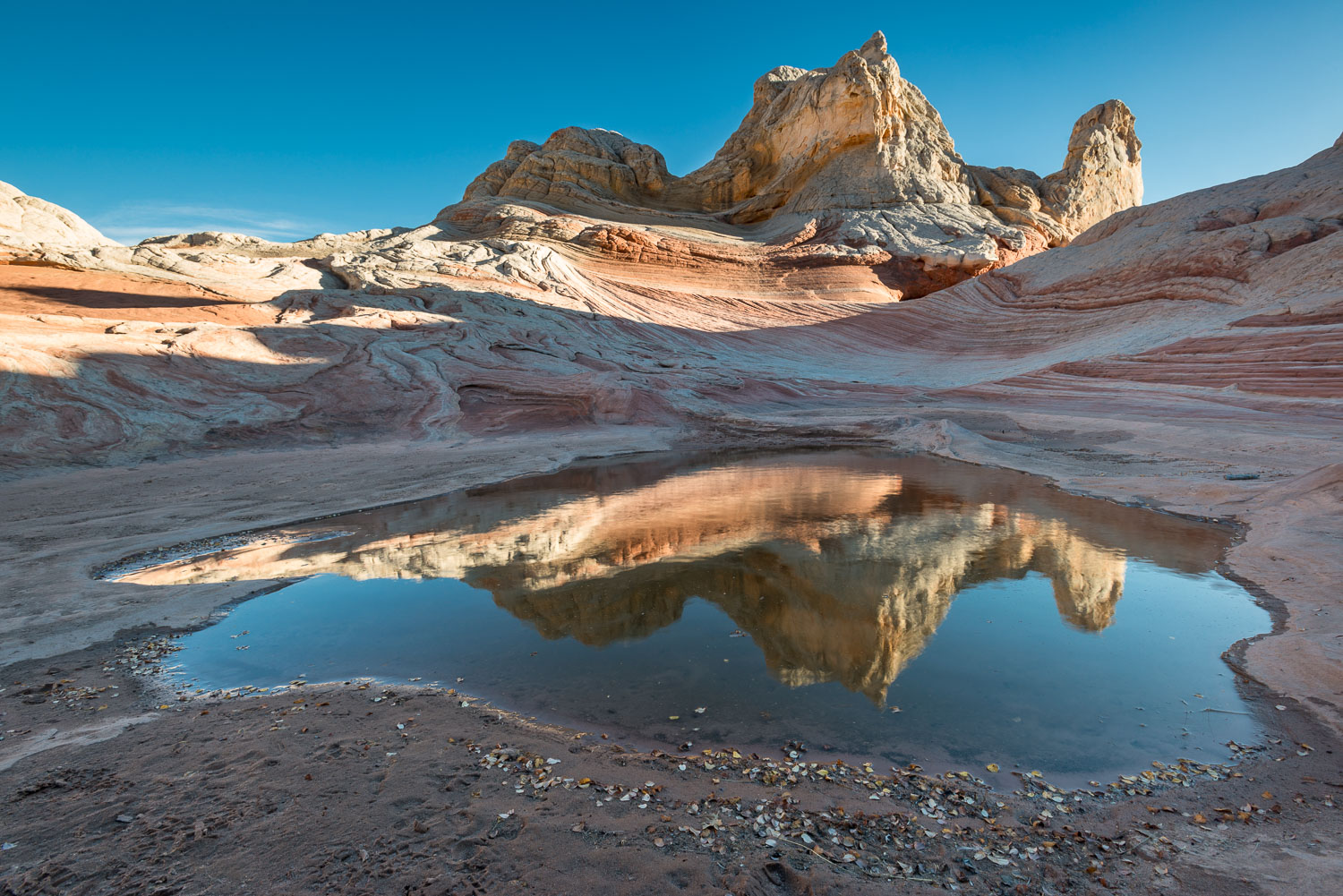 """White Pocket Reflection"" Vermillion Cliffs, Arizona"