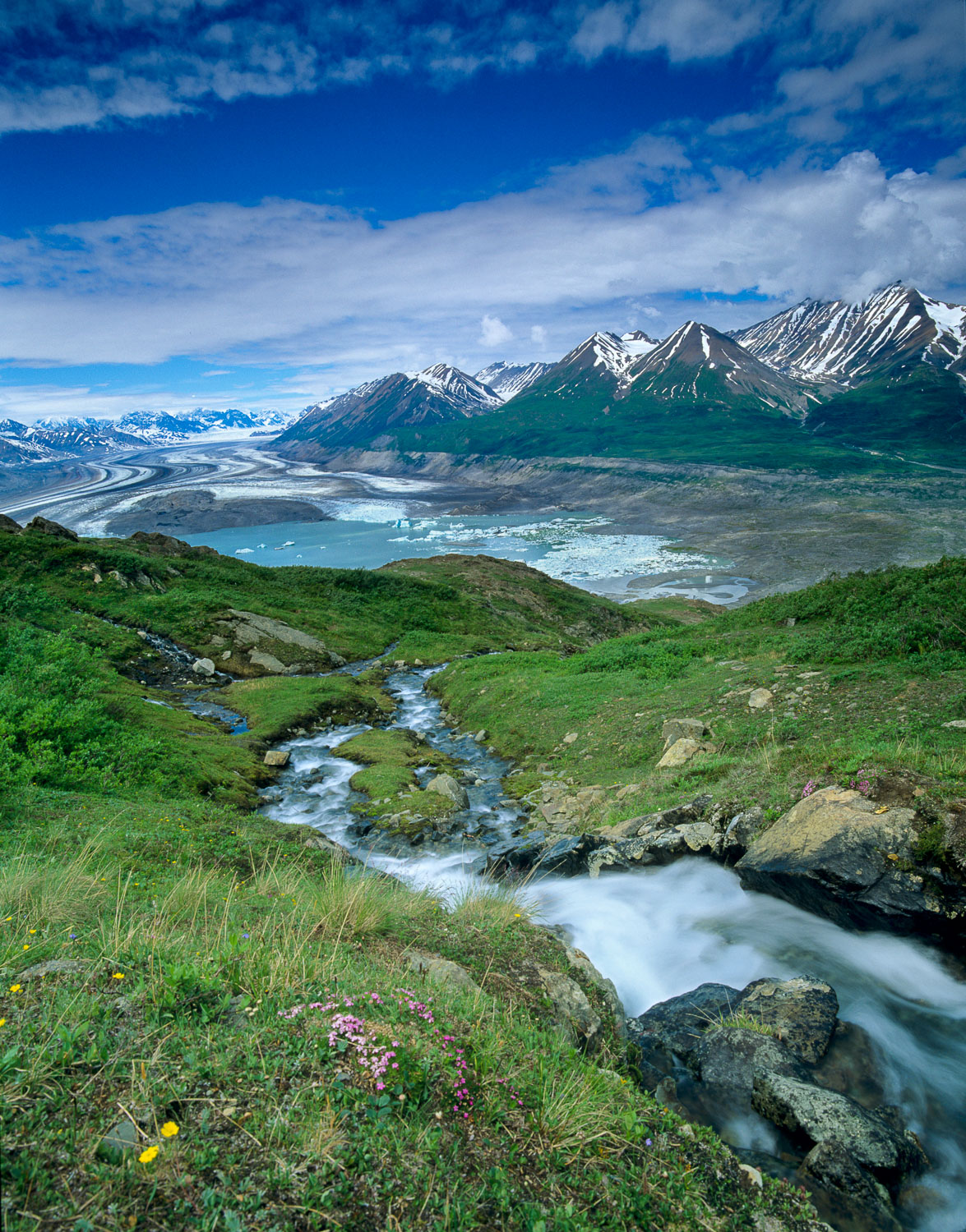 """Glacial Eden"",  Lush Tundra and Creek , Lowell Lake and Alsek R"