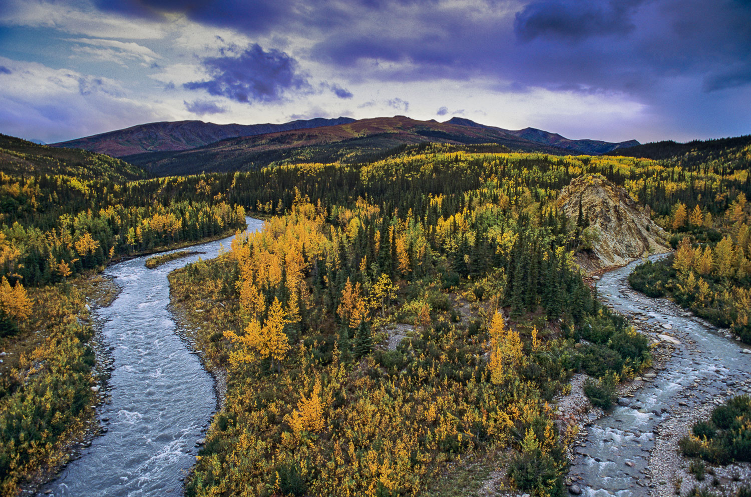 'Fall Curve on Riley Creek', Denali National Park, Alaska