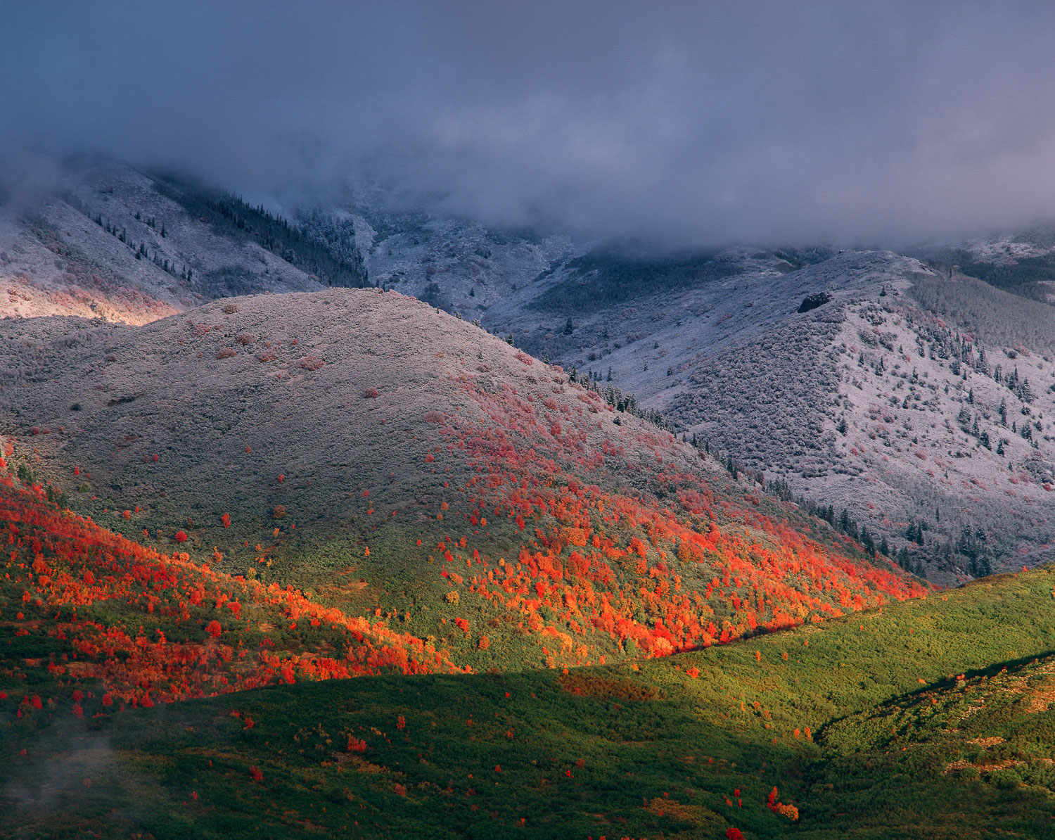"""Three Seasons"" September snow and Red Maples near Midway and Pa"