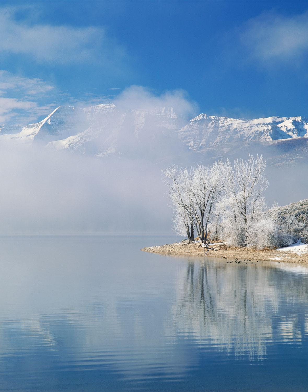 """""""Frozen Mist"""", Rimed Trees and Rising Fog, Deer Creek Reservoir"""