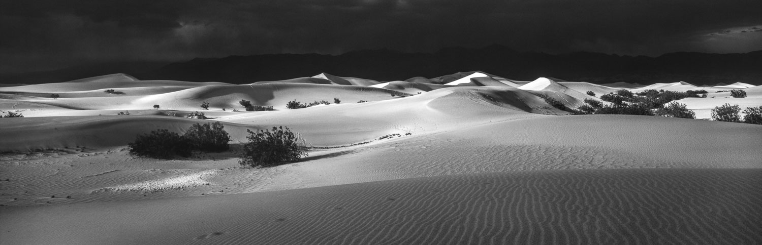 Black and White B&W  Panoramic Landscape of Mesquite Flat Sand D