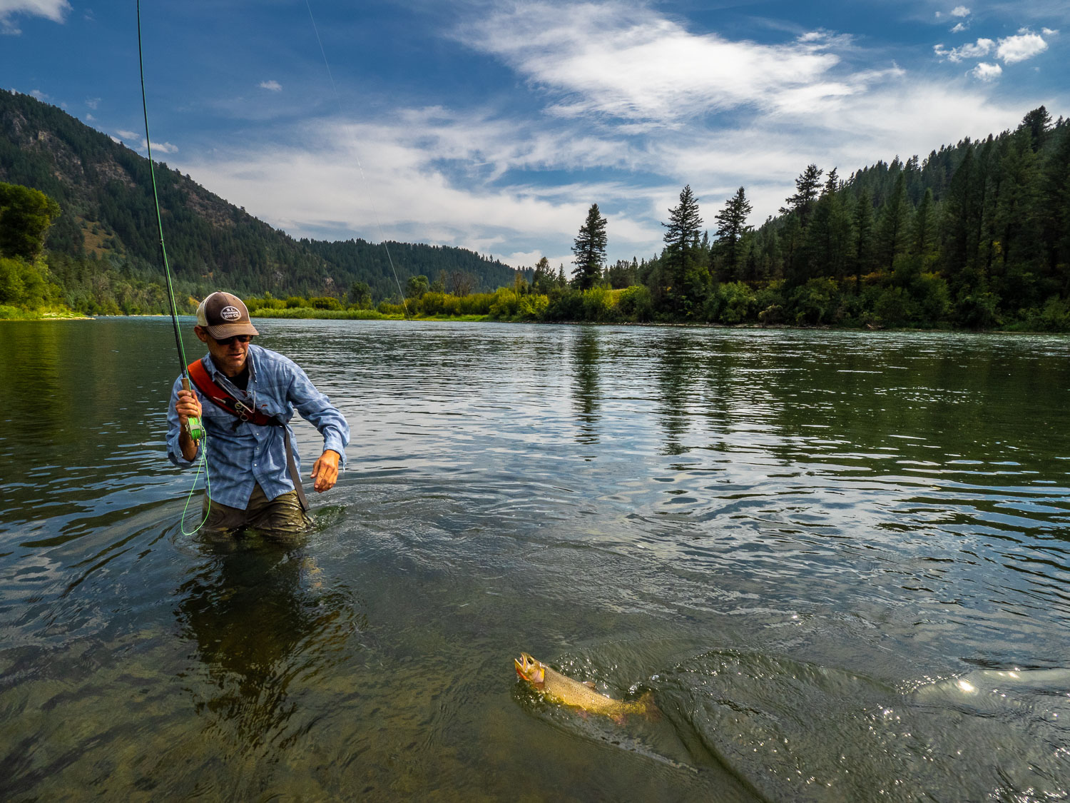 Fisherman preparing to release a Snake River Cutthroat Trout, So