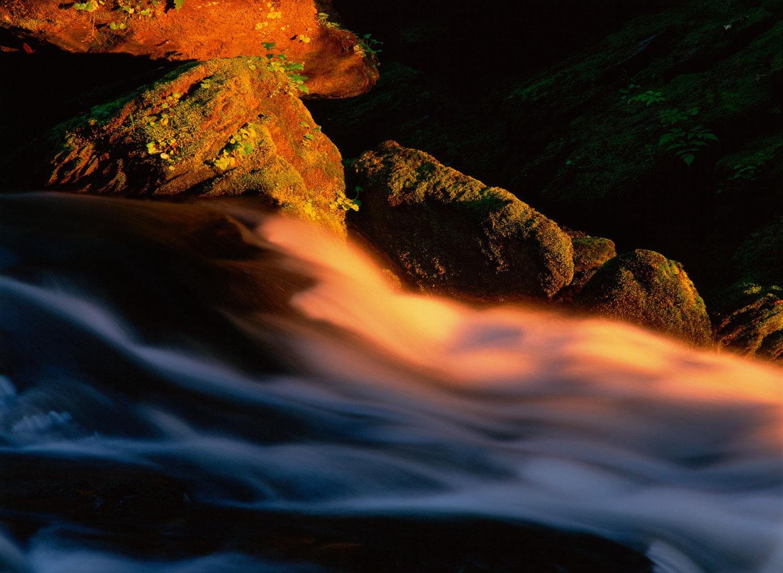 """""""Velvet Flow"""", A creek in motion at sunset near Ketchikan, Alask"""