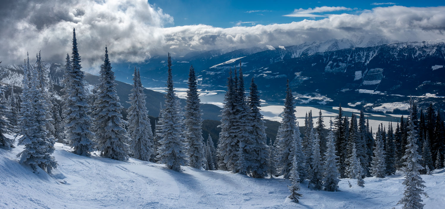 Revelstoke Mountain Resort and Flocked Tree Panorama, British Co