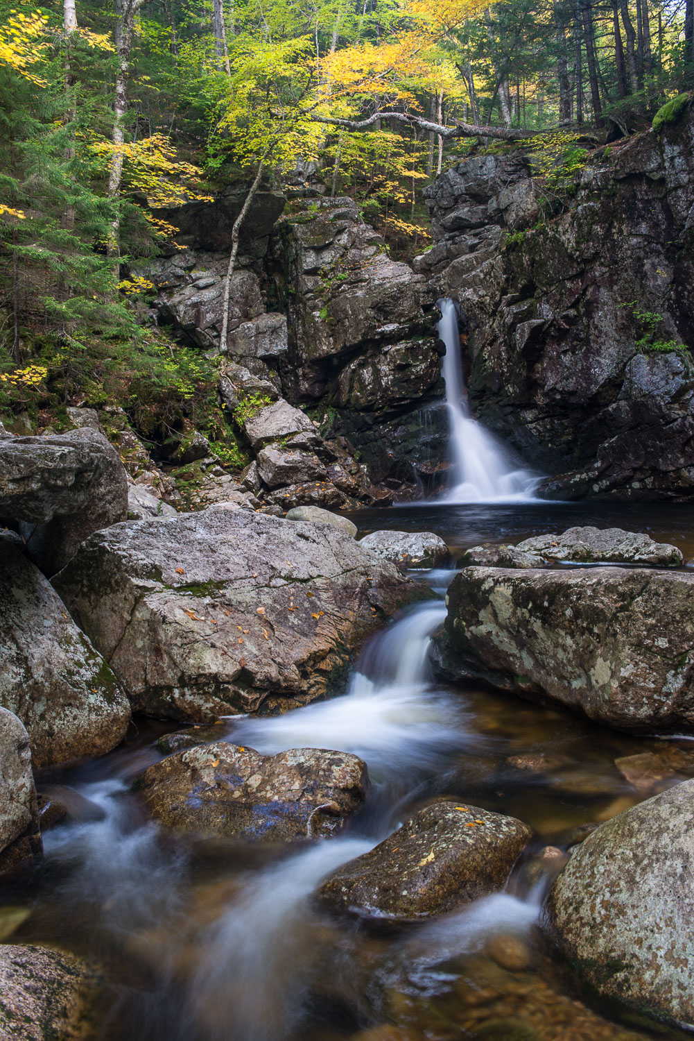 """Cascading Brook in Autumn Splendor"": Franconia Notch State Park"
