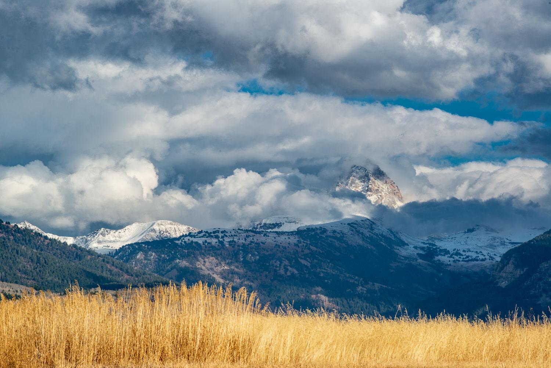 """Art from Home"": Grand Teton and Yellow Grass, Teton Mountains n"