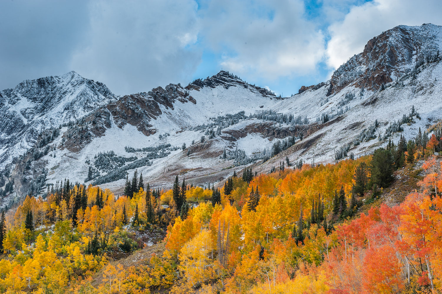 Orange and Yellow Aspens, Mt. Superior and September Snow, Littl