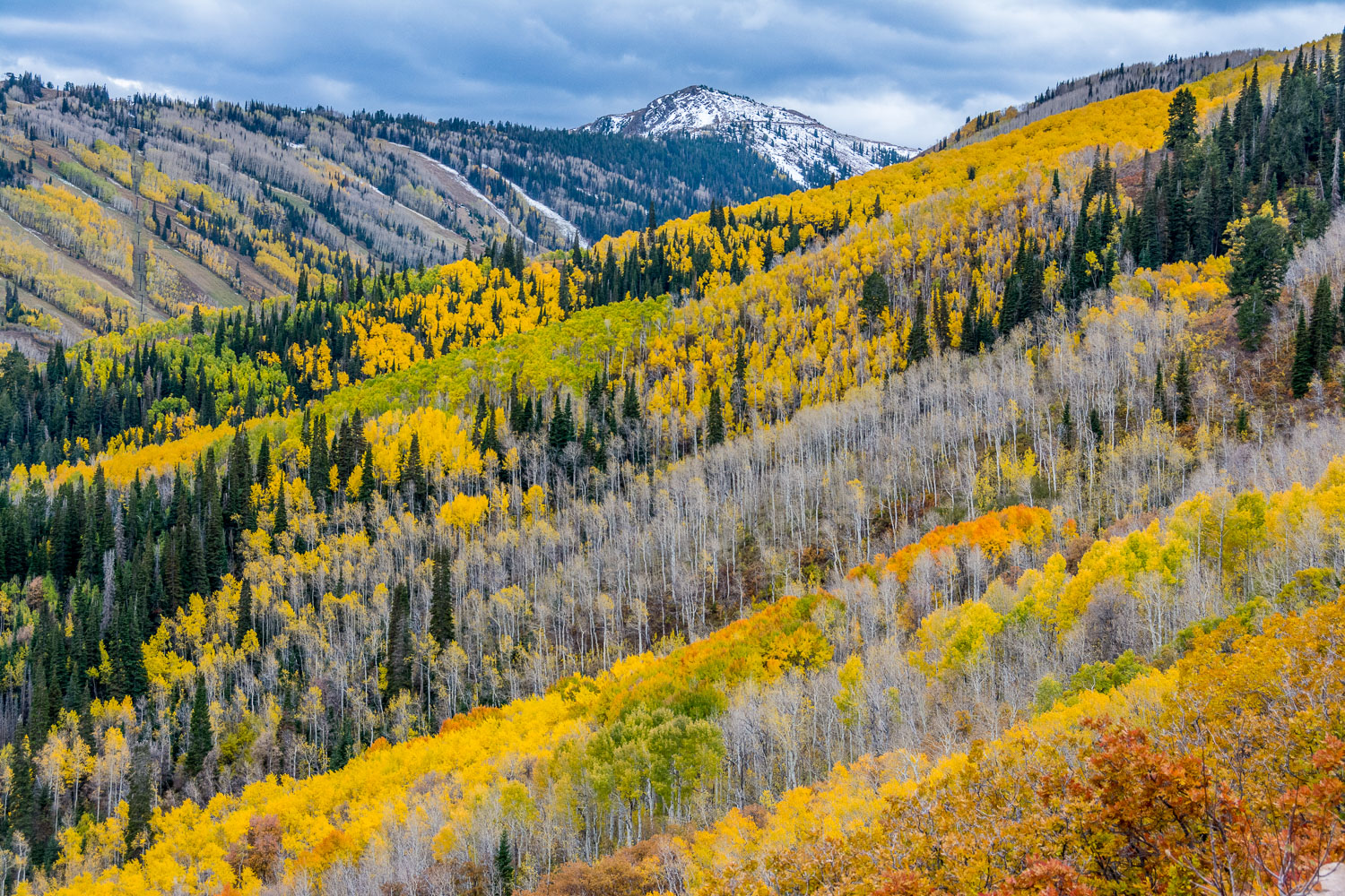 Peak Fall Foliage from Iron Canyon, Park City, Wasatch Mountains