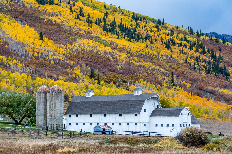 McPolin Barn and Fall Foliage near Park City, Wasatch Mountains,