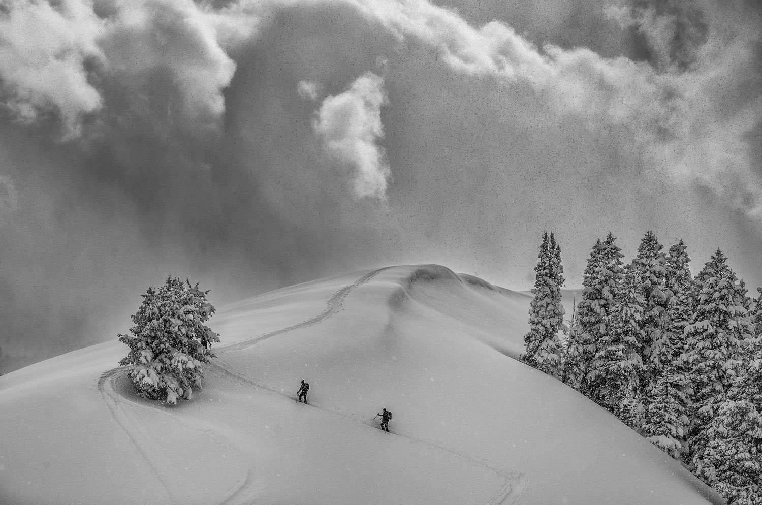 Backcountry Skiers in B & W climbing for Fresh Powder, Big Cotto