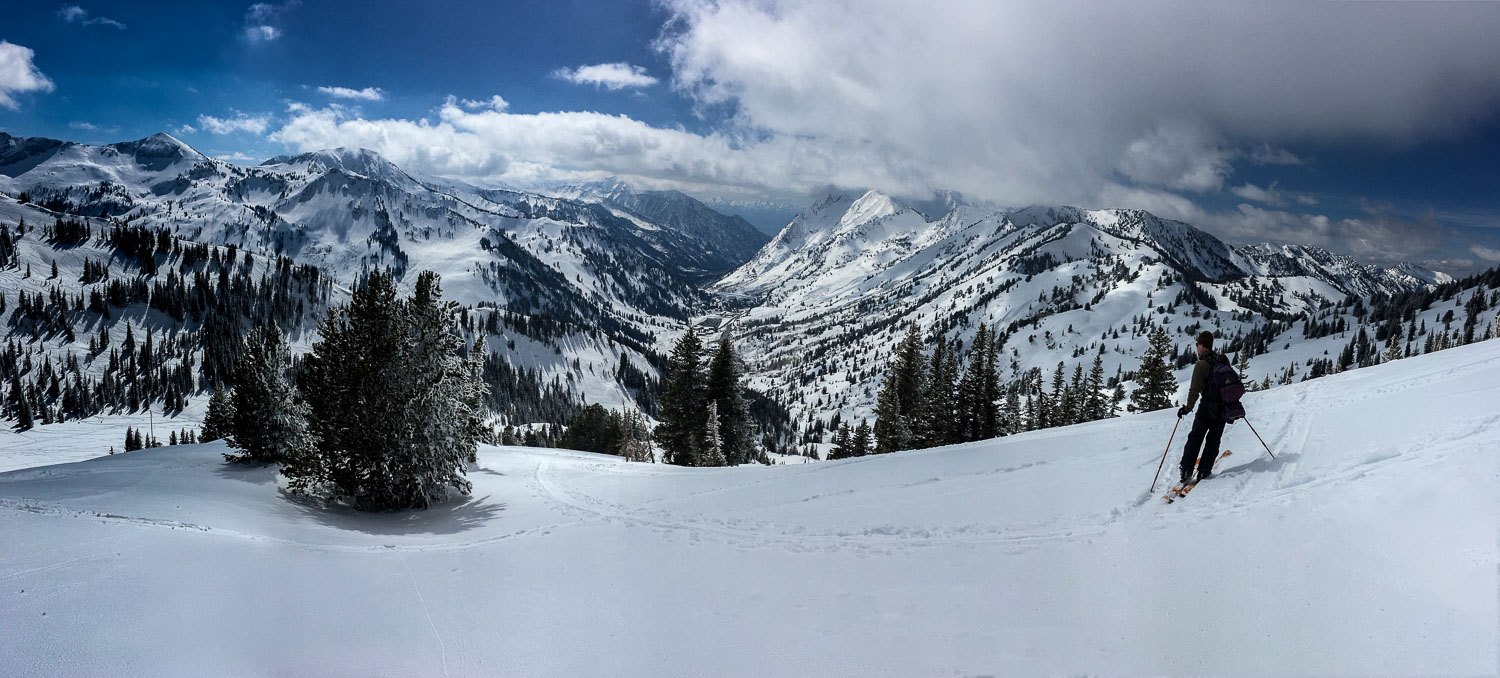 Backcountry Skier Looks Down Grizzly Gulch: Panoramic Photograph