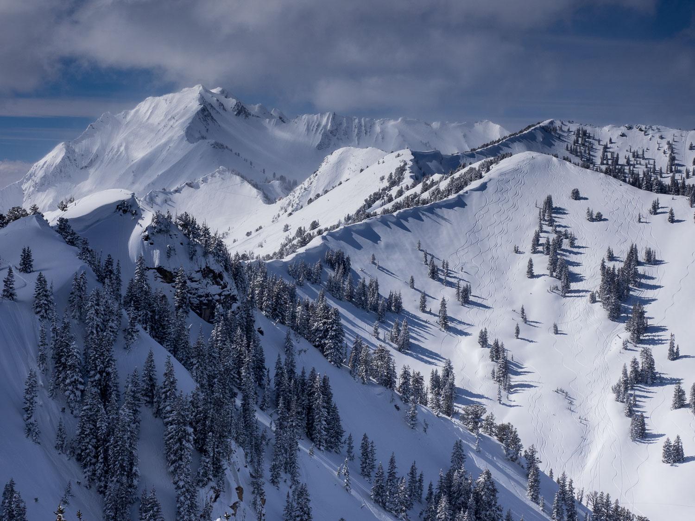 Fresh  Ski Tracks in Silver Fork: Days Fork and Cardiac Ridge, W