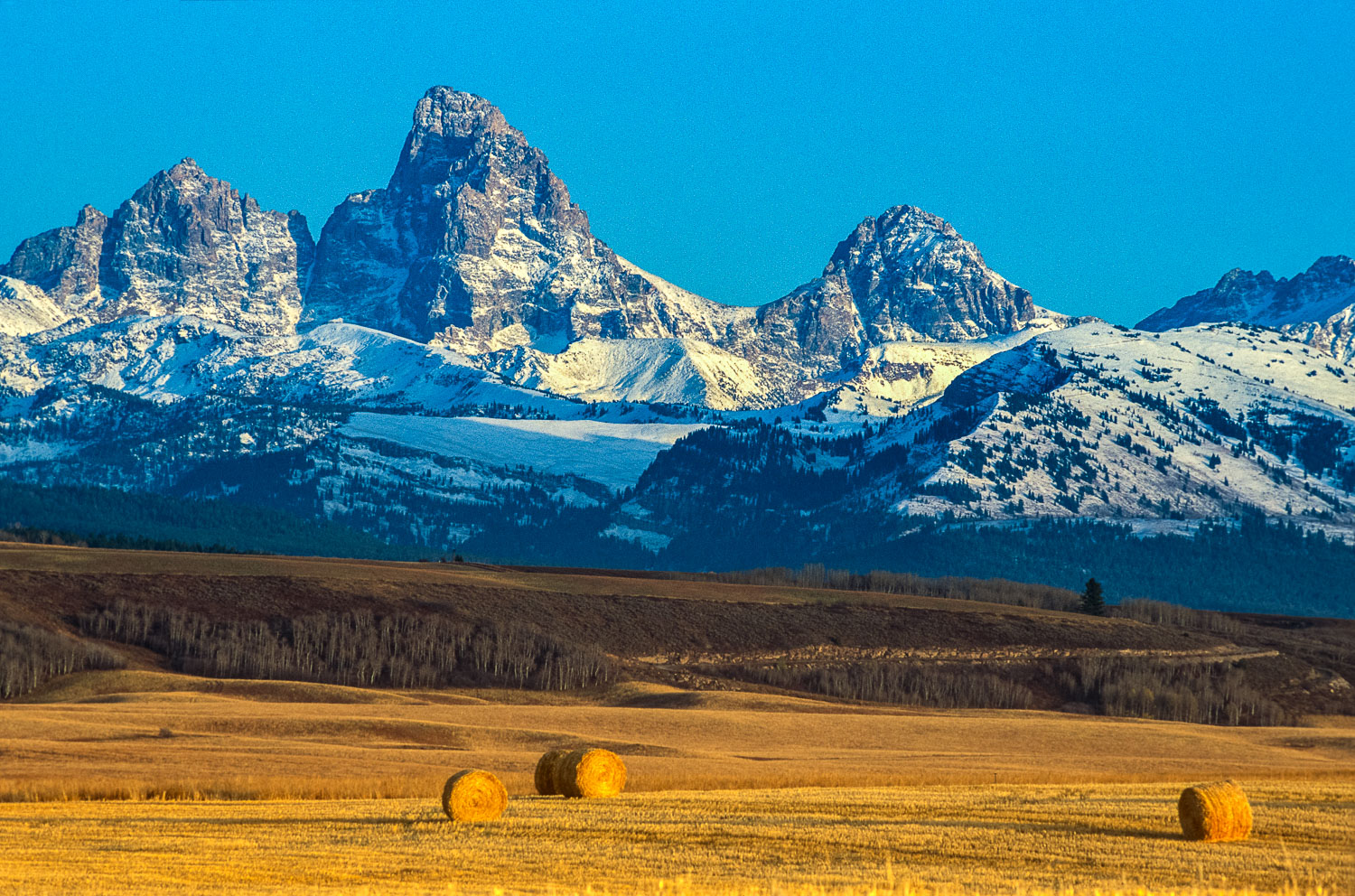 """""""Cultivation and Wilderness"""" Teton Mountain Range and Hay Bales"""
