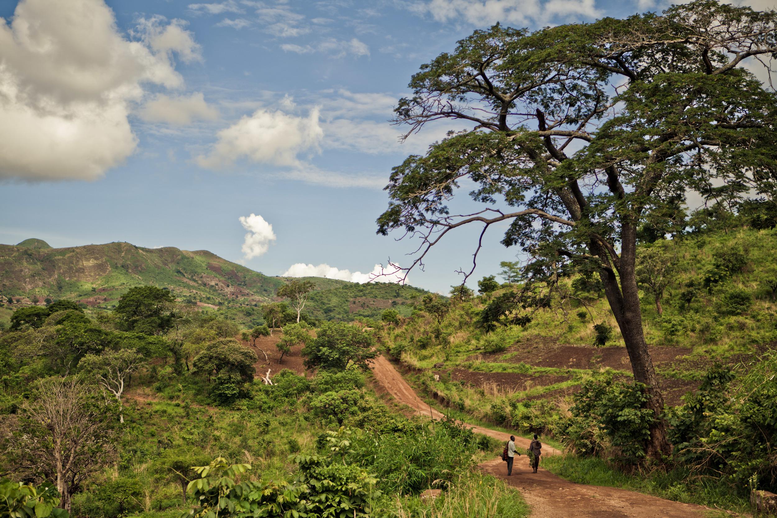 December-1-blog-header_two-people-walking-in-Malawi.jpg
