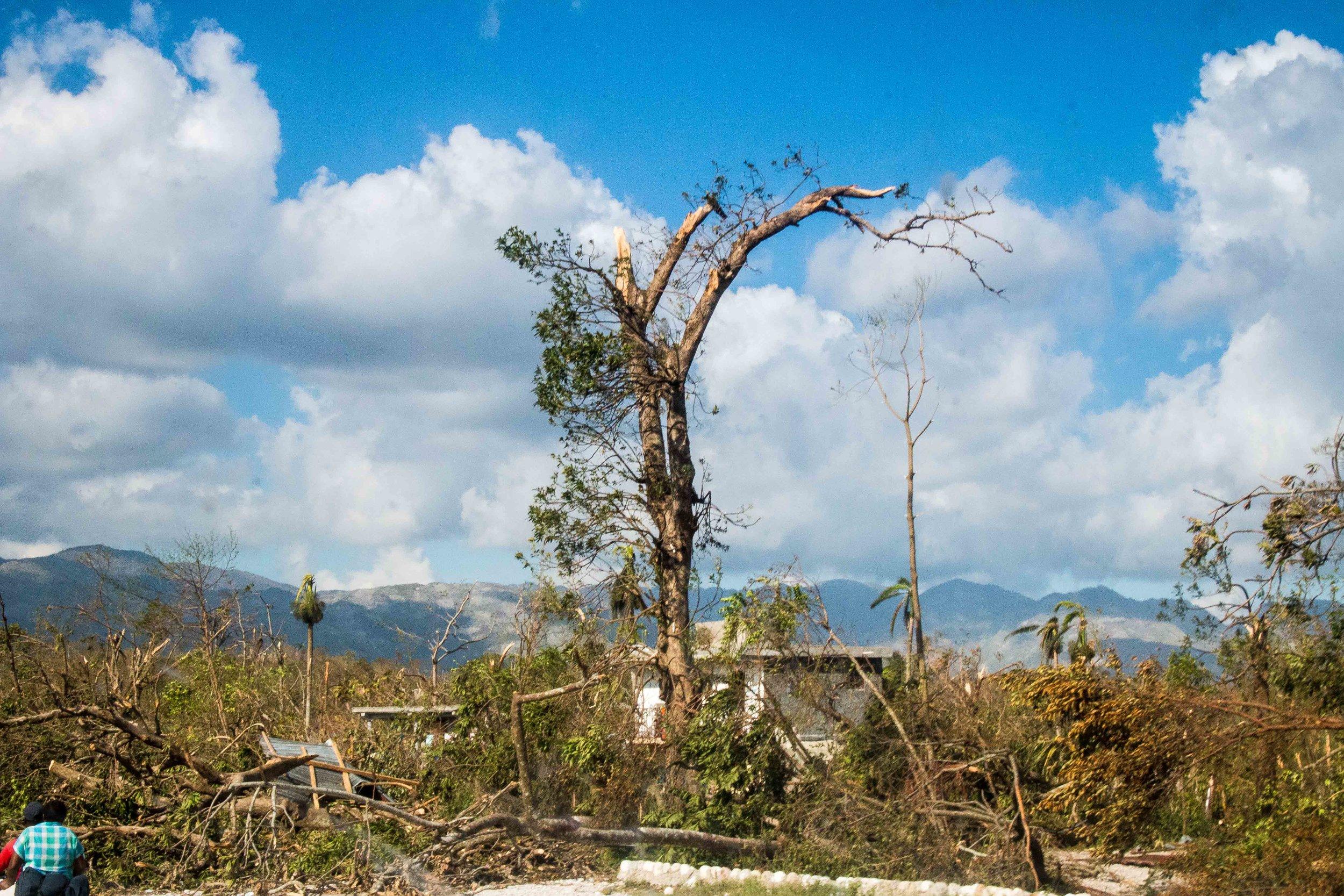Haiti Relief Update