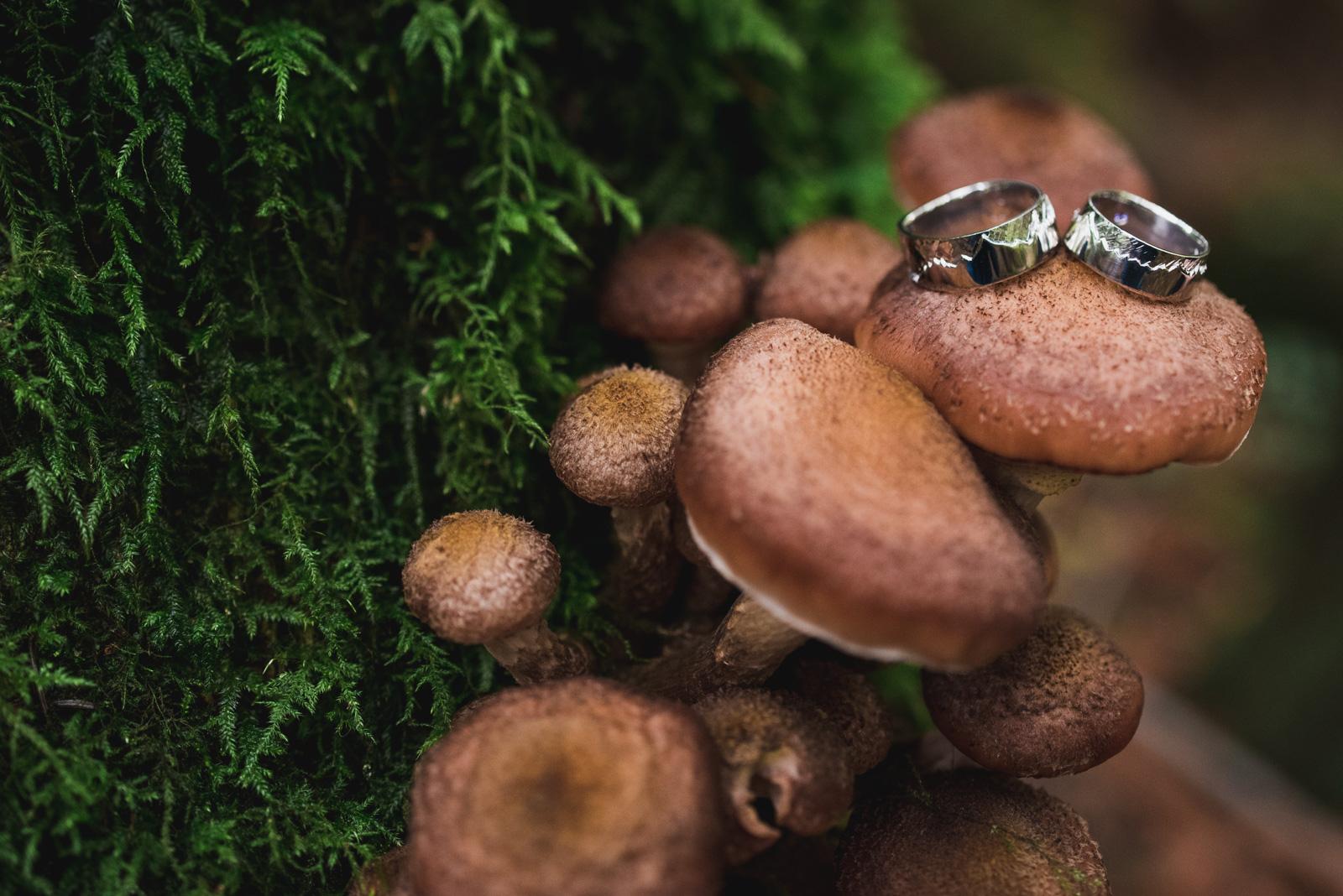 vancouver-island-wedding-photographers-cliff-gilker-park-smugglers-cove-elopement-4.jpg