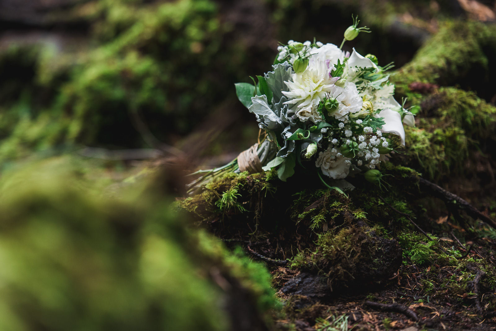 vancouver-island-wedding-photographers-cliff-gilker-park-smugglers-cove-elopement-16.jpg