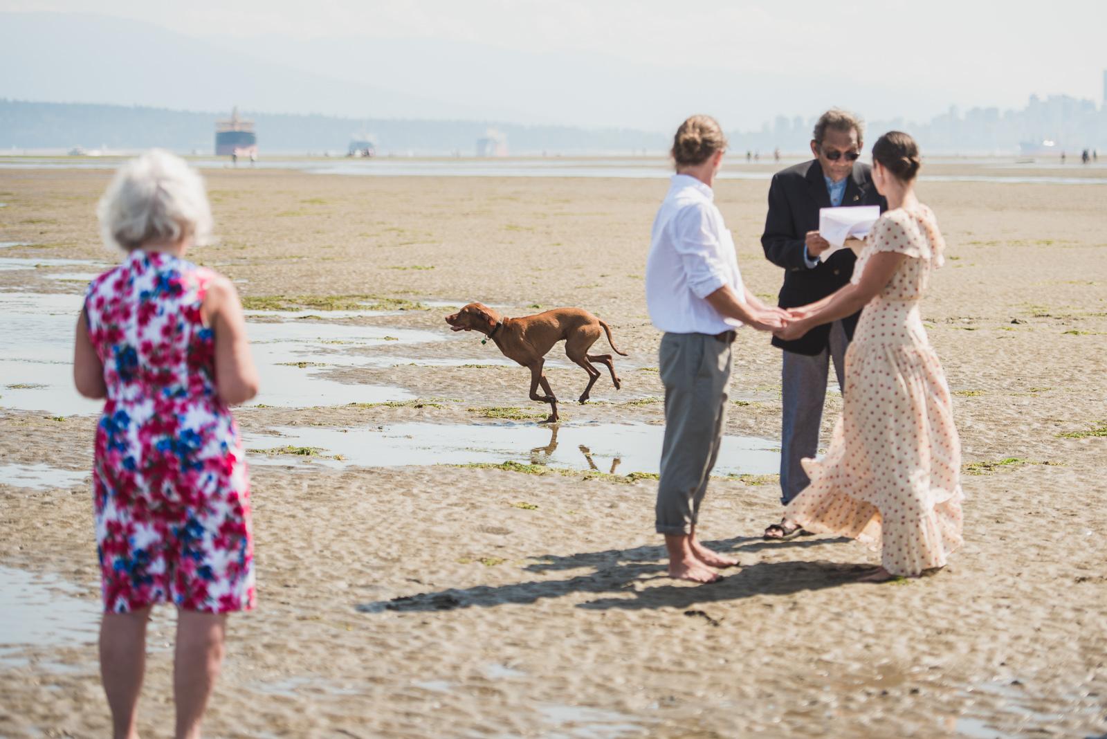 vancouver-island-wedding-photographers-spanish-banks-elopement-8.jpg