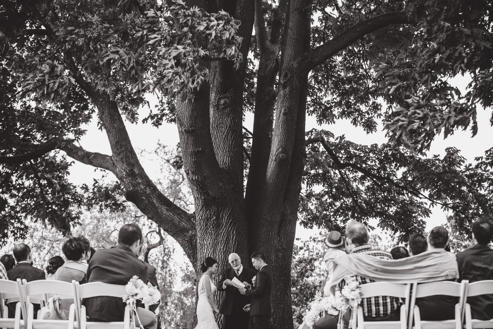 vancouver-island-wedding-photographers--brock-house-restaurant-wedding-32.jpg