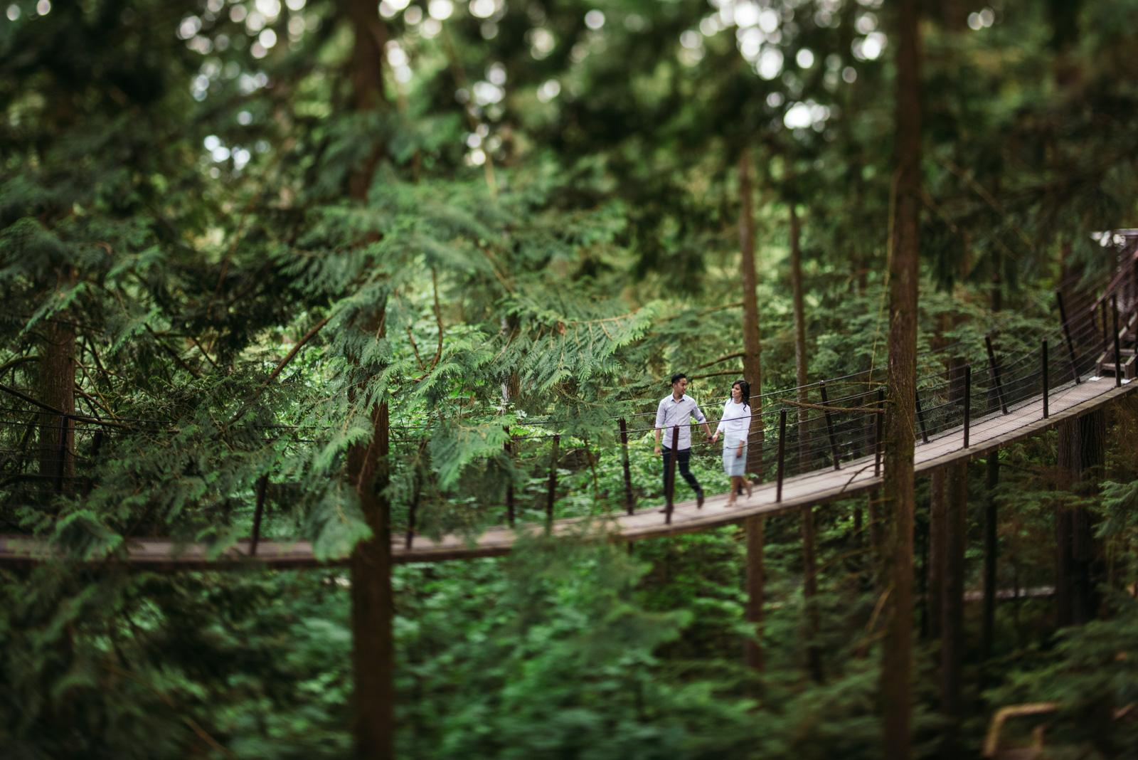 vancouver-island-wedding-photographers-capilano-suspension-bridge-engagement-14.jpg