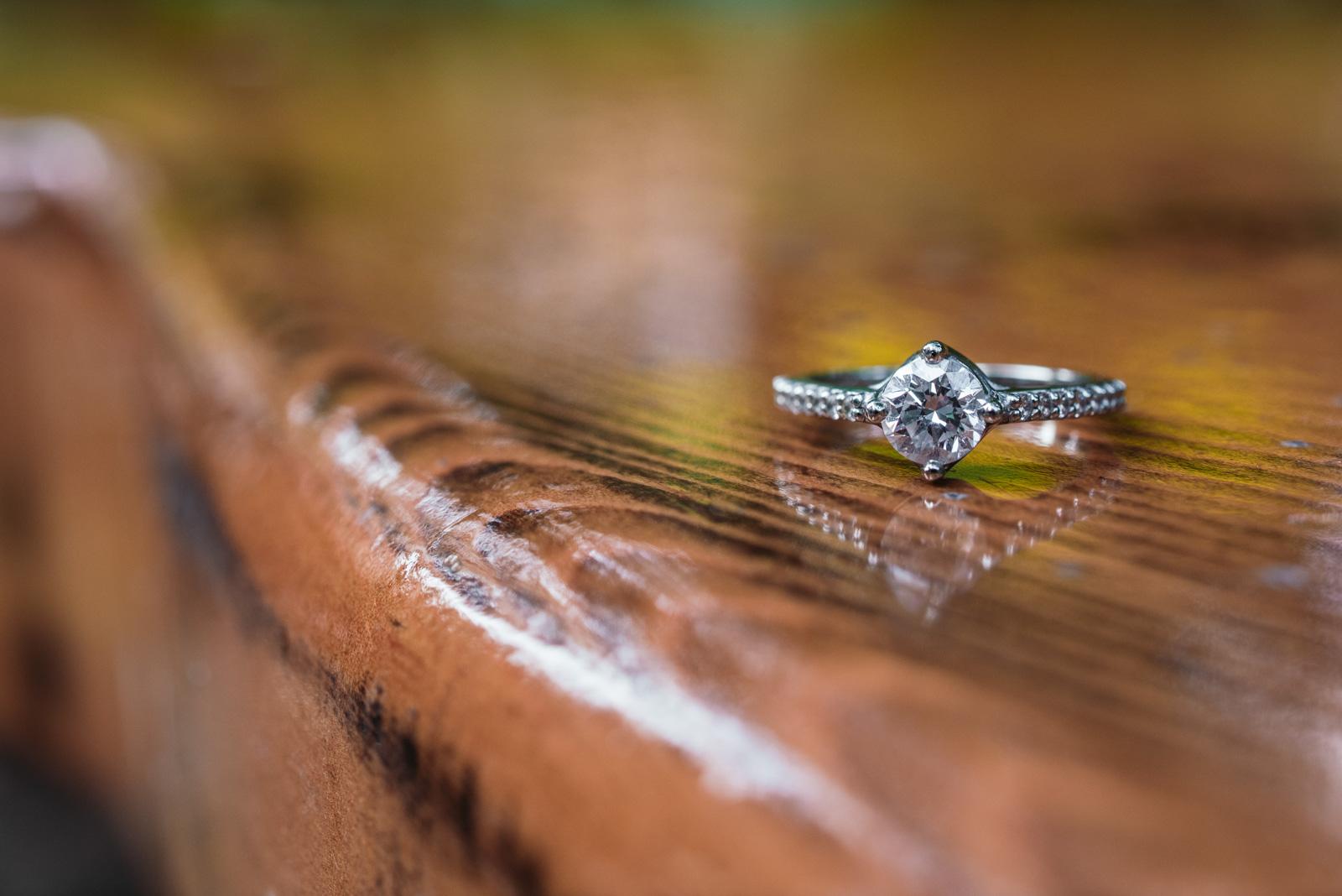 vancouver-island-wedding-photographers-capilano-suspension-bridge-engagement-19.jpg