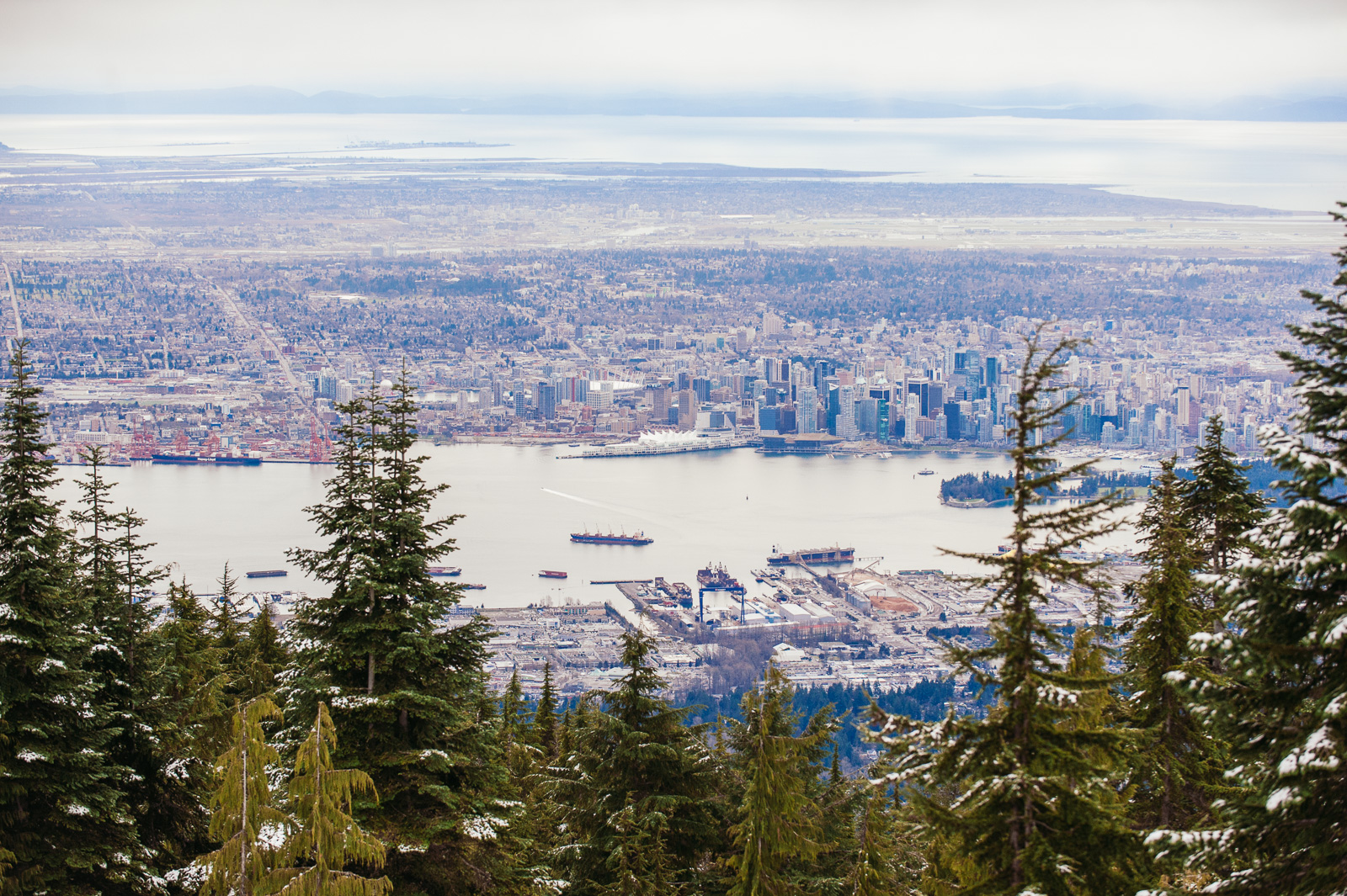 victoria-wedding-photographers-grouse-mountain-proposal-1.jpg