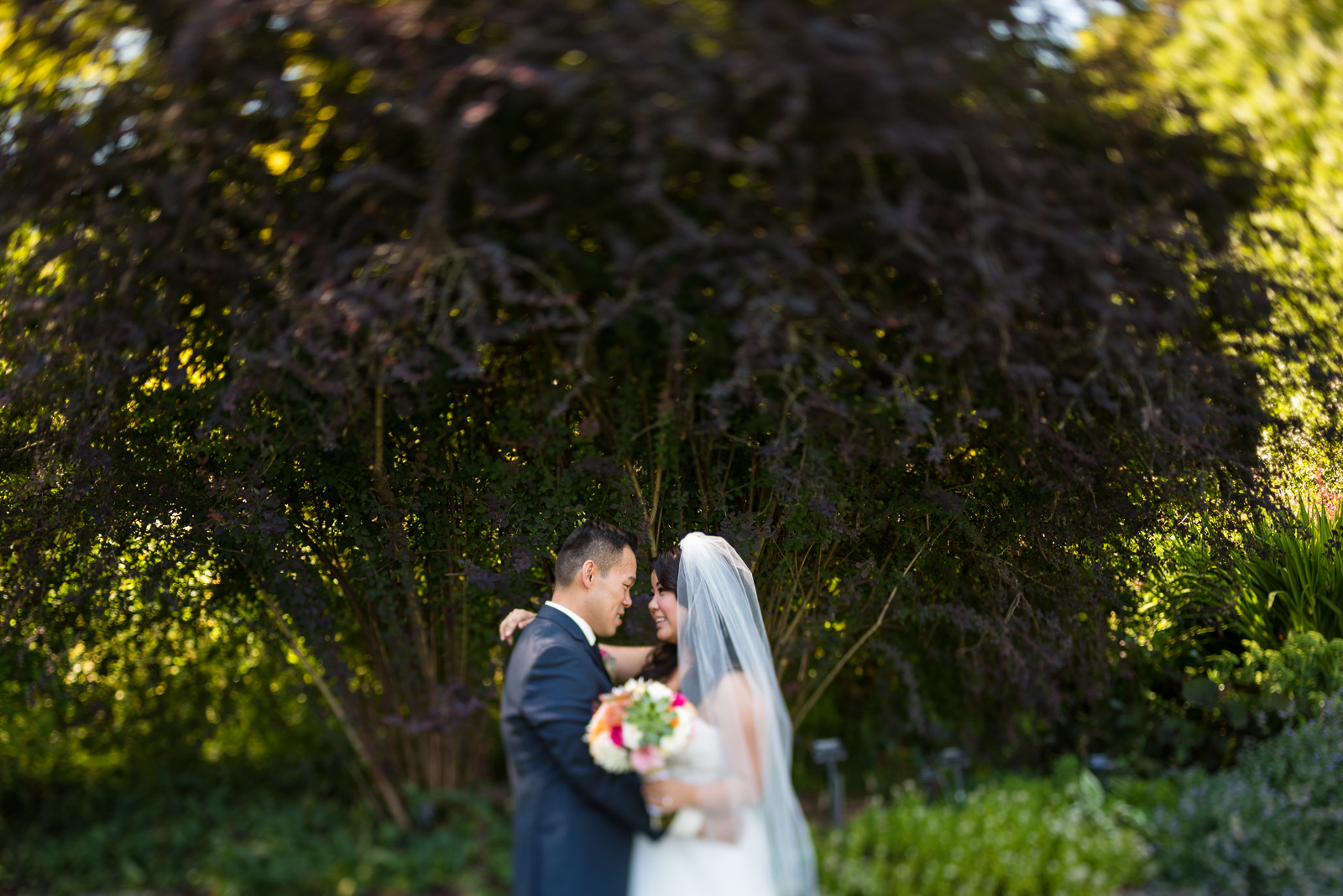 victoria-wedding-photographers-shaughnessy-restaurant-wedding-vandusen-gardens-wedding-20.jpg