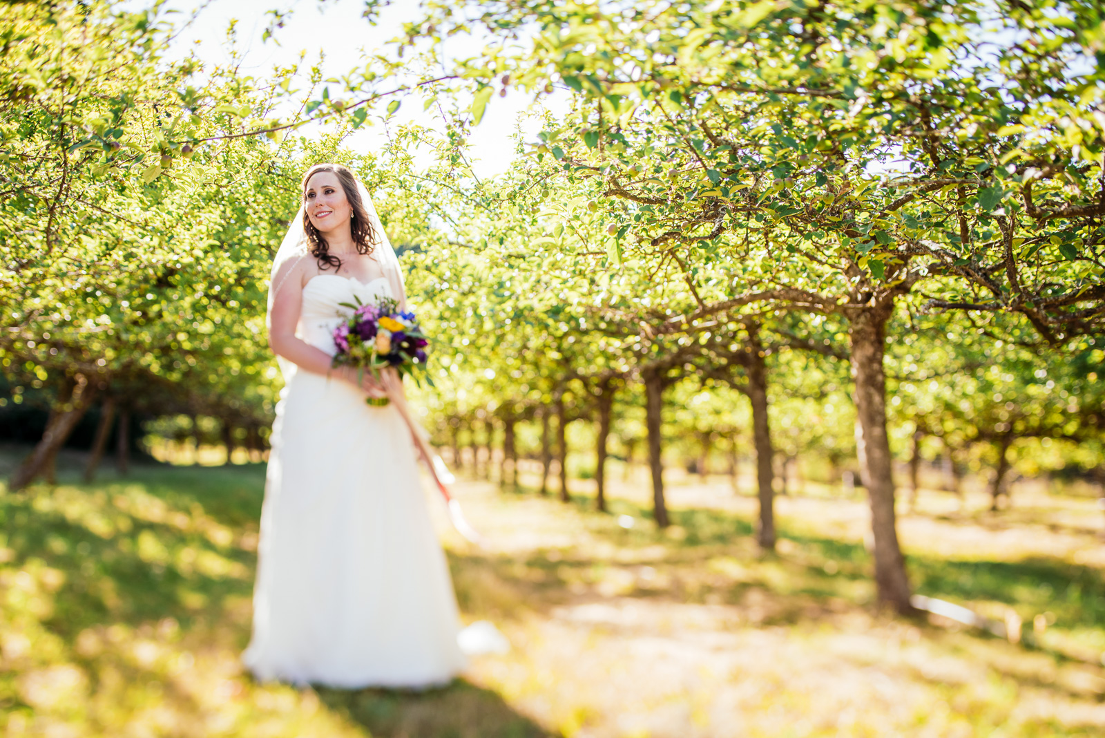 victoria-wedding-photographers-merridale-cidery-wedding-17.jpg