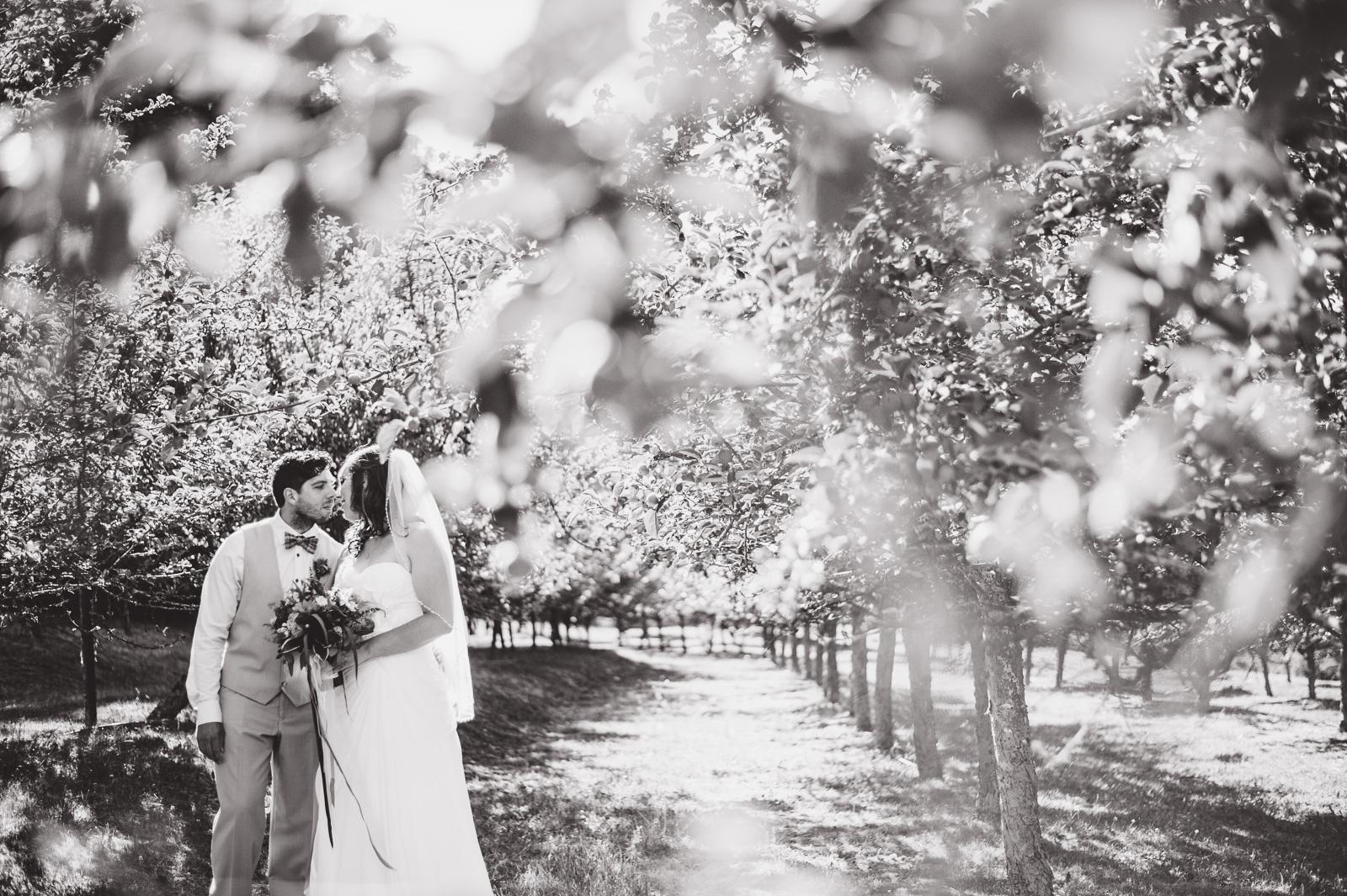 victoria-wedding-photographers-merridale-cidery-wedding-20.jpg