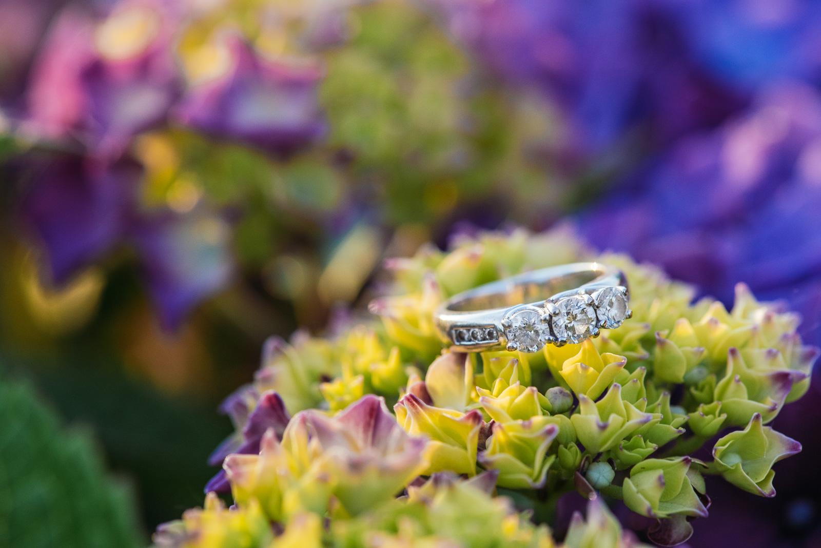 victoria-wedding-photographers-heritage-park-mission-engagement-12.jpg