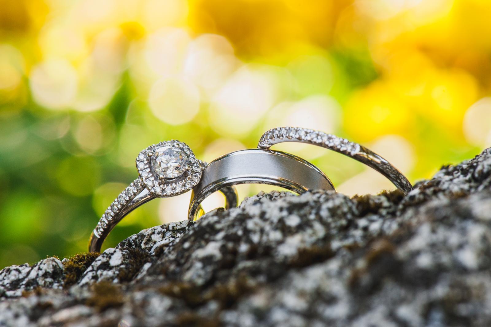 bc-wedding-photographers-harrison-lake-wedding-36.jpg
