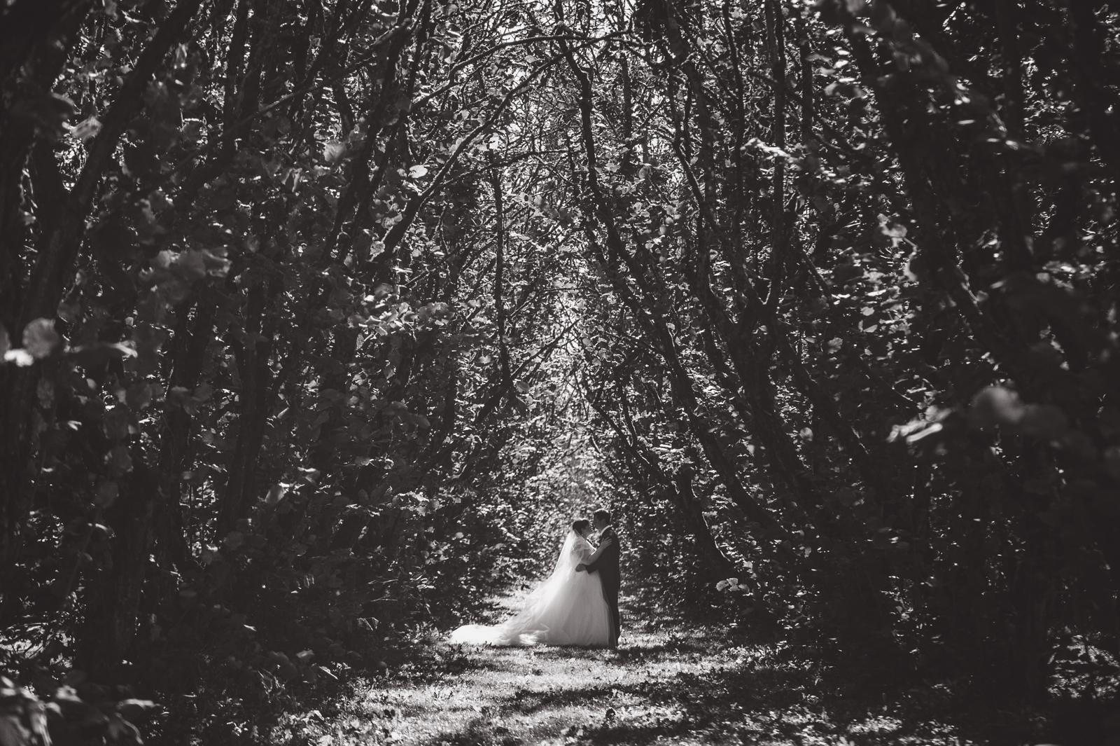 bc-wedding-photographers-harrison-lake-wedding-38.jpg