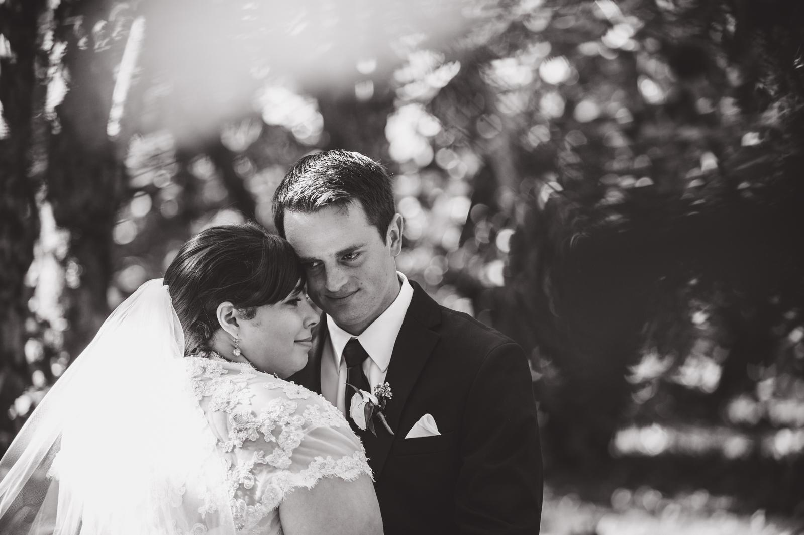 bc-wedding-photographers-harrison-lake-wedding-43.jpg