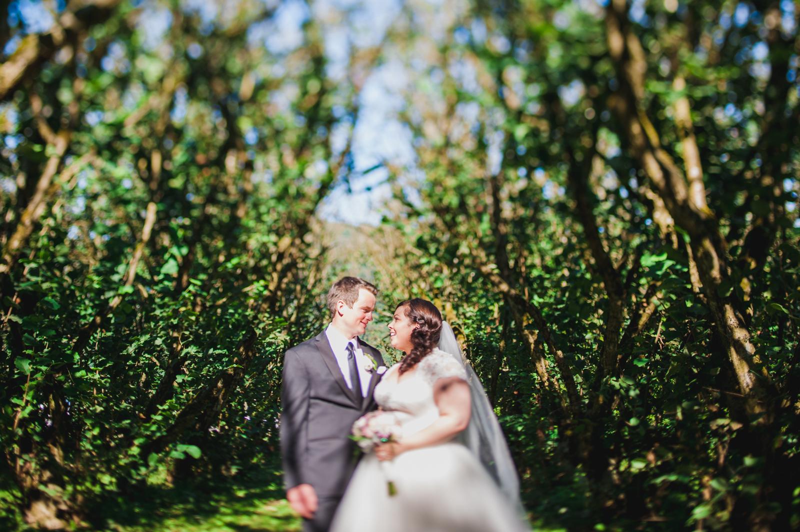 bc-wedding-photographers-harrison-lake-wedding-45.jpg