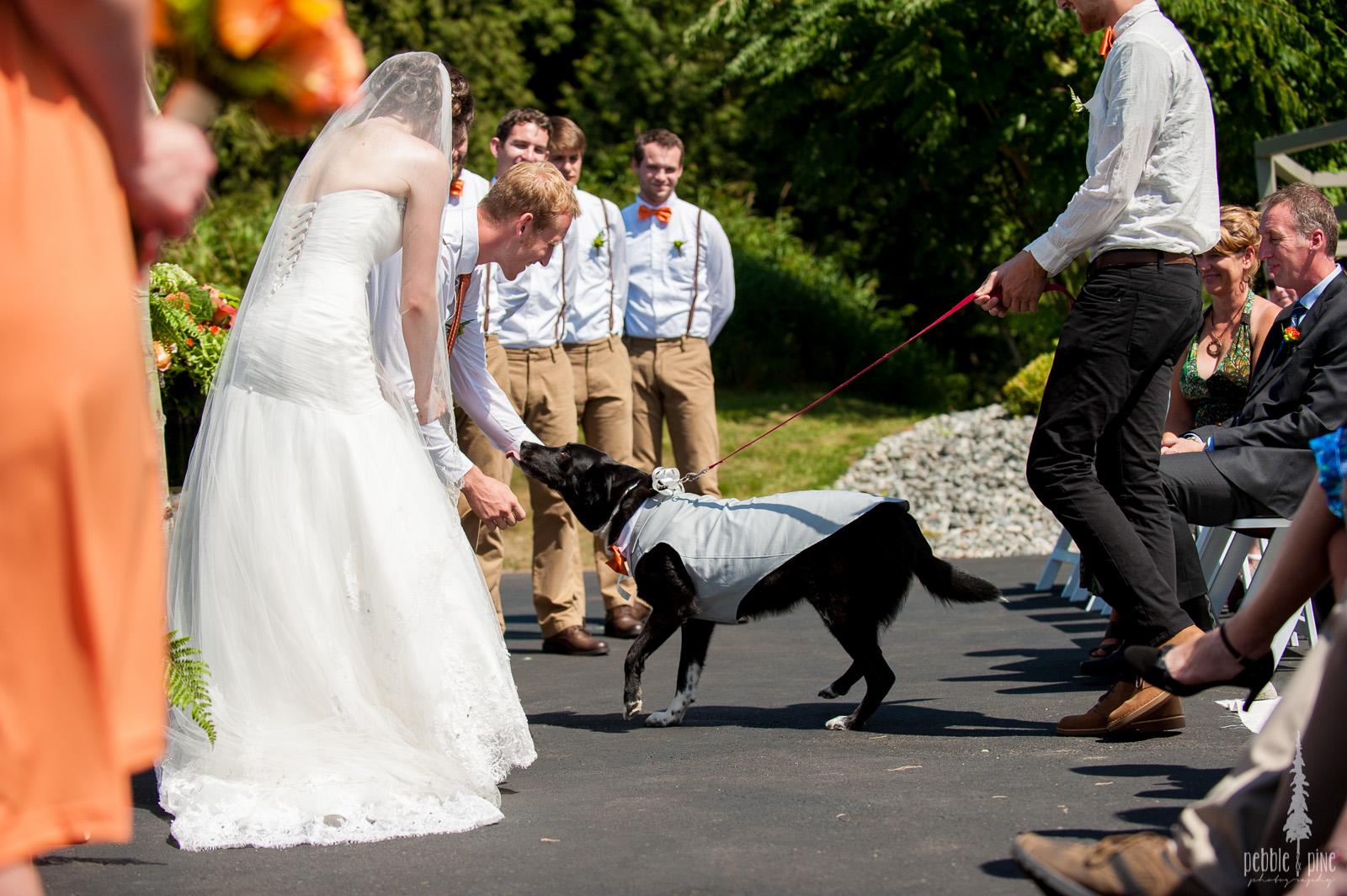 vancouver-island-wedding-photographers-golden-eagle-golf-course-wedding-mountaintop-wedding-20.jpg