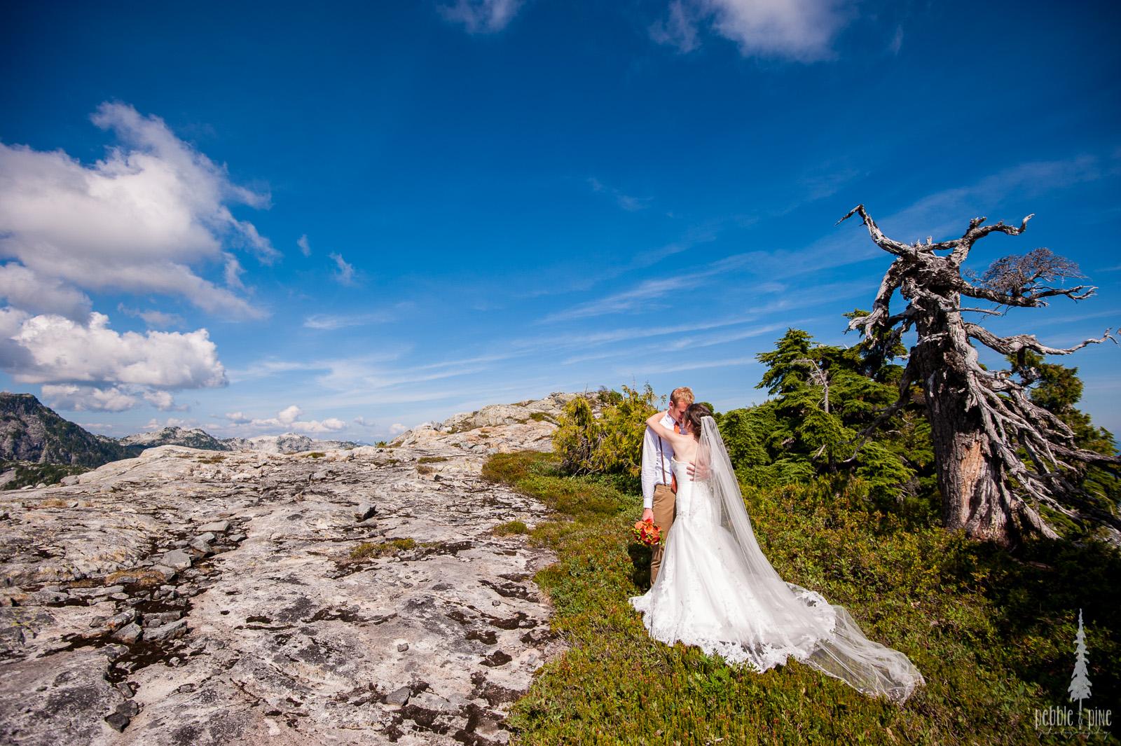 vancouver-island-wedding-photographers-golden-eagle-golf-course-wedding-mountaintop-wedding-41.jpg