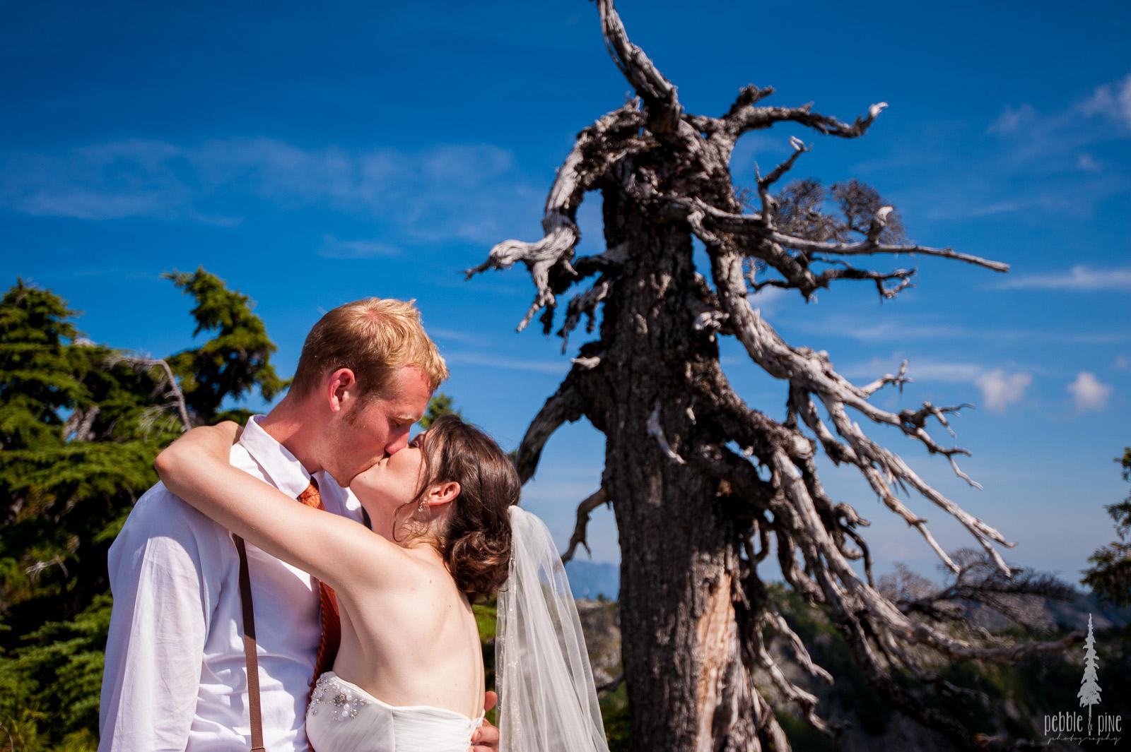 vancouver-island-wedding-photographers-golden-eagle-golf-course-wedding-mountaintop-wedding-42.jpg