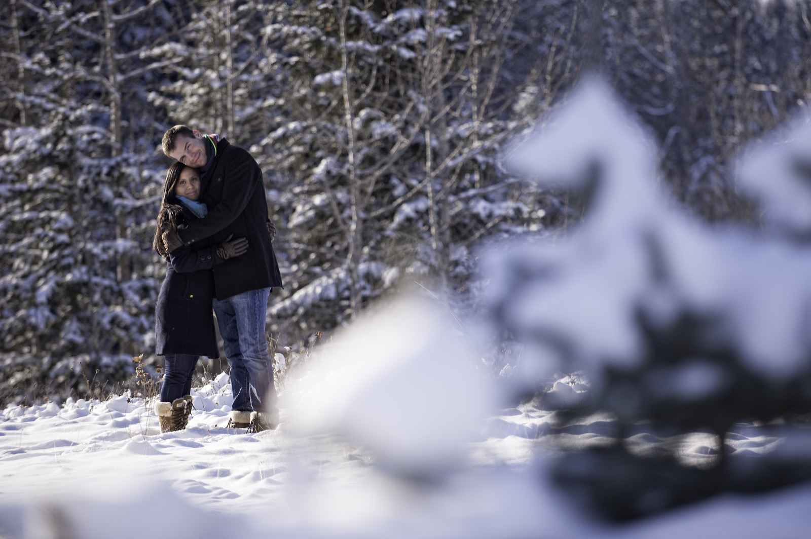 victoria-wedding-photographers-calgary-winter-engagement-proposal-07.jpg