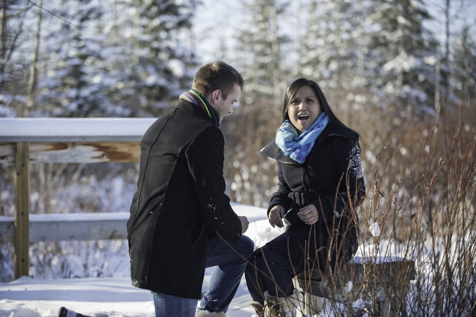 victoria-wedding-photographers-calgary-winter-engagement-proposal-13.jpg