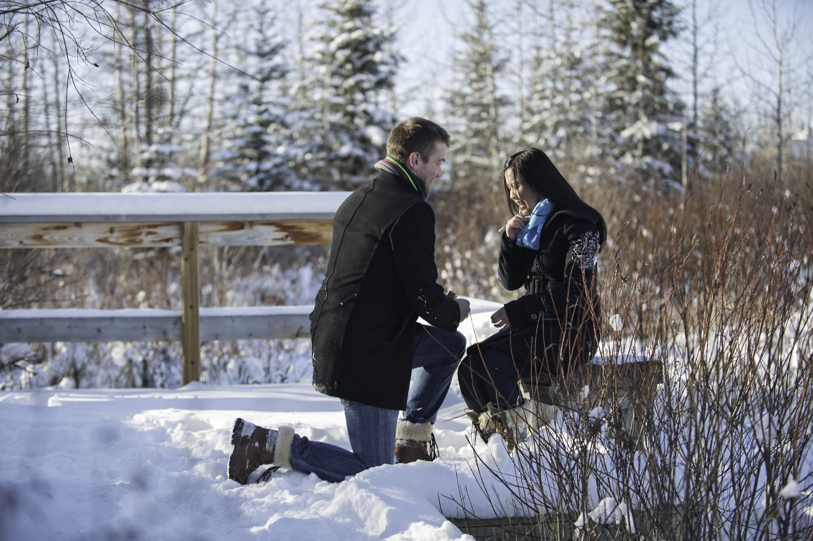 victoria-wedding-photographers-calgary-winter-engagement-proposal-15.jpg