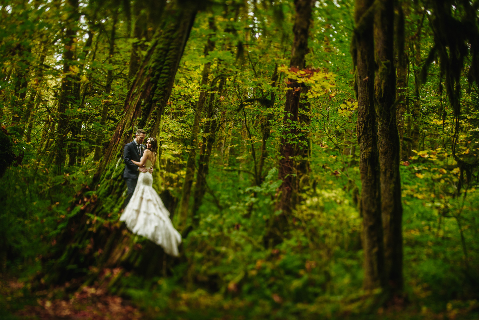 victoria-wedding-photographers-get-married-at-cheakamus-centre-45.jpg