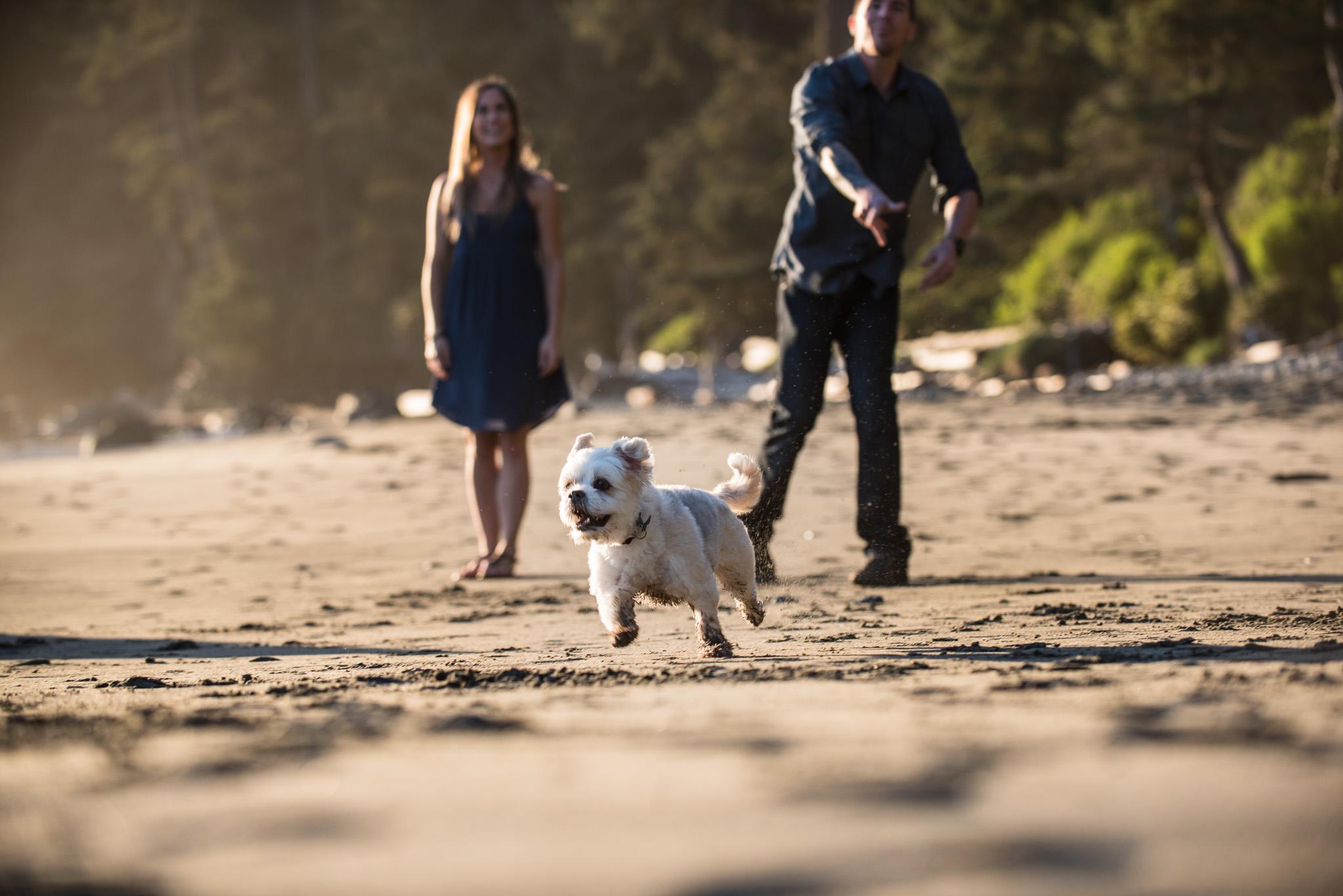 mystic-beach-engagement-victoria-wedding-photographer-17.jpg