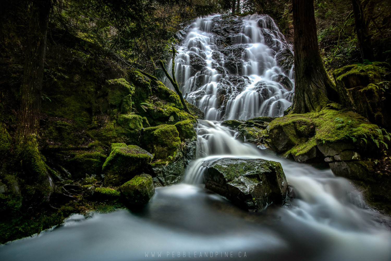 Maryvine Falls in Sooke BC //  Captured by Sayde
